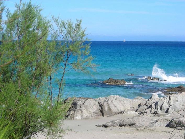 Location de vacances - Villa à Calvi - Des plages magnifiques