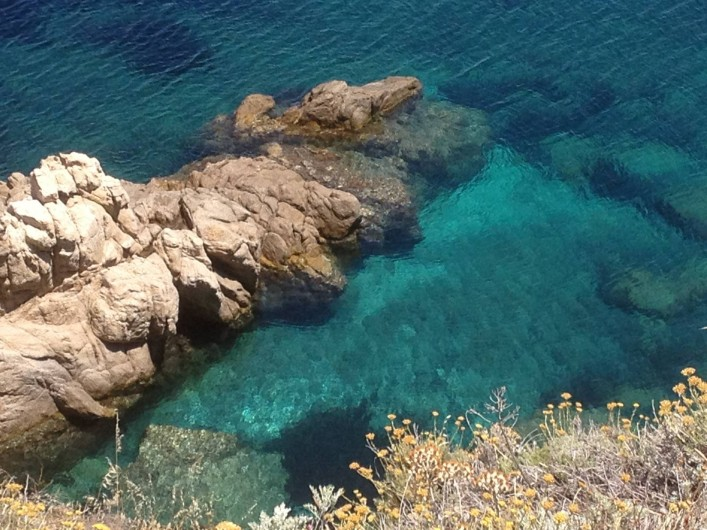 Location de vacances - Villa à Calvi - Criques en partant à pieds de chez nous.