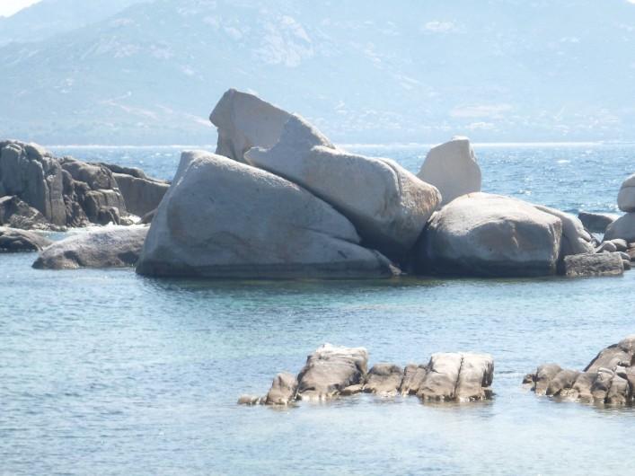 Location de vacances - Villa à Calvi - A Punta di Spano.