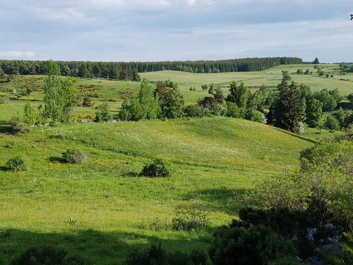 Location de vacances - Villa à Valuéjols - Paysage autour du village