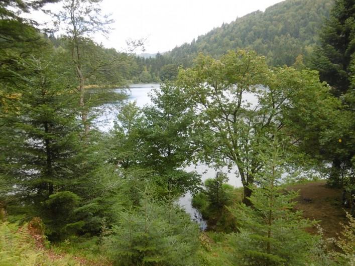 Location de vacances - Chalet à La Bresse - Lac de Blanchemer