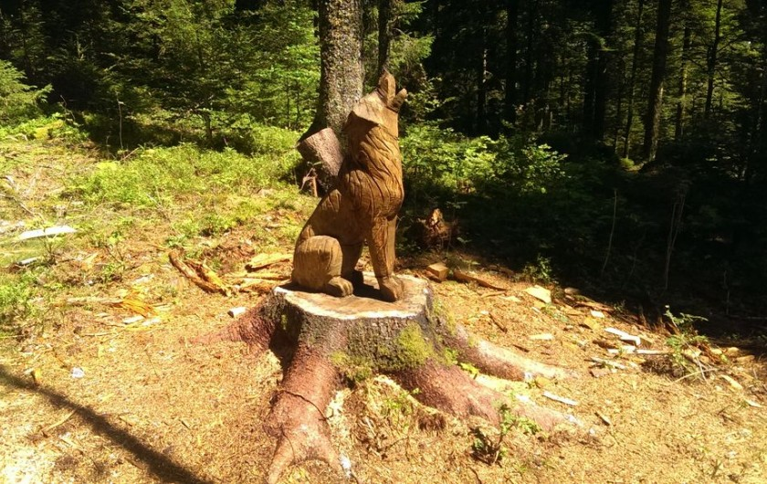 Location de vacances - Chalet à La Bresse - Petit animal pas si sauvage !