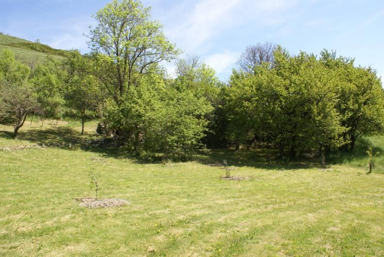Location de vacances - Chalet à Saint-Paul-sur-Ubaye - le petit bois sur le jardin