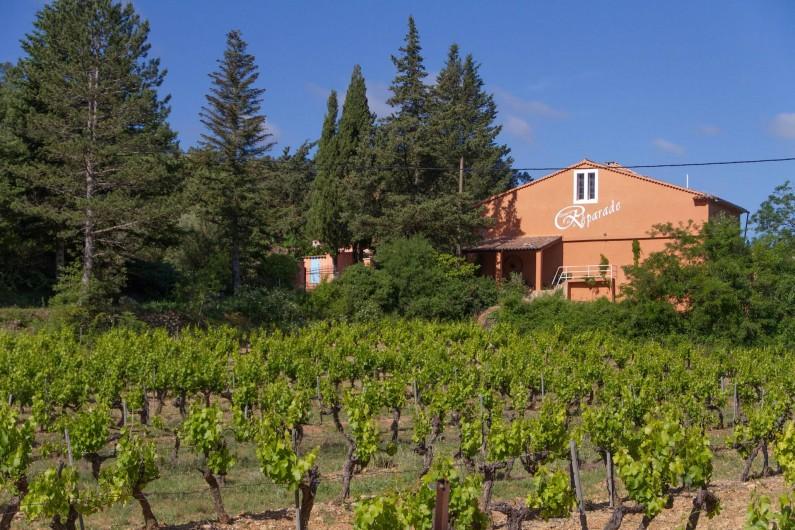 Location de vacances - Gîte à Chateauvert - Les vignes à l'entrée