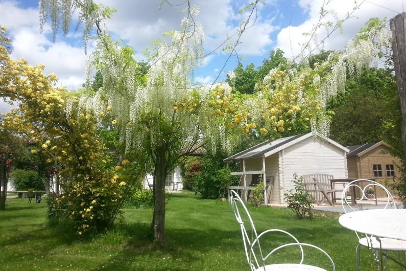 Location de vacances - Chambre d'hôtes à Saint-Thomas - Salon de jardin sous une glycine