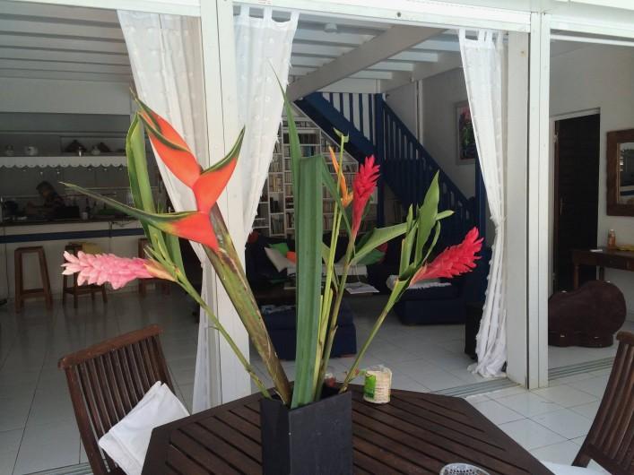 Location de vacances - Villa à Sainte-Anne - derrière les alpinias et roses de porcelaine, le salon..