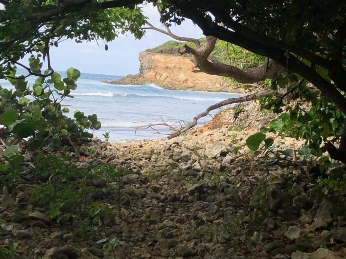 """Location de vacances - Villa à Sainte-Anne - """"notre"""" falaise"""