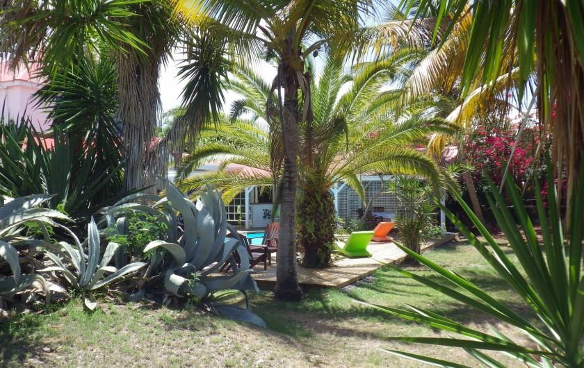 Location de vacances - Villa à Sainte-Anne - une partie du grand jardin