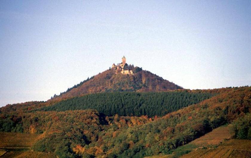 Location de vacances - Gîte à Kintzheim - Haut-Koenigsbourg