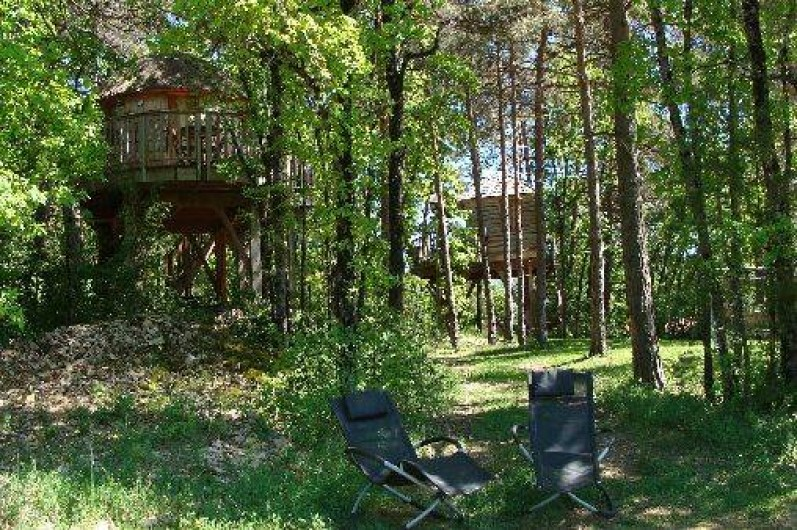 Location de vacances - Cabane dans les arbres à Boynes
