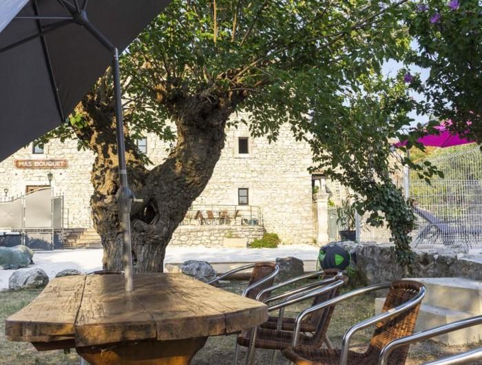 Location de vacances - Gîte à Seynes - MÛRIER  et terrasse