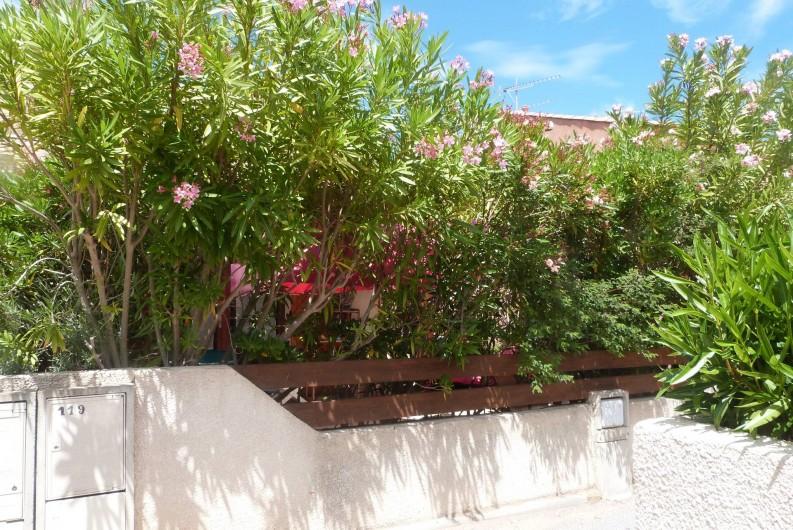 Location de vacances - Villa à Gruissan Plage - la bordure de lauriers roses