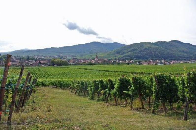Location de vacances - Gîte à Kientzheim