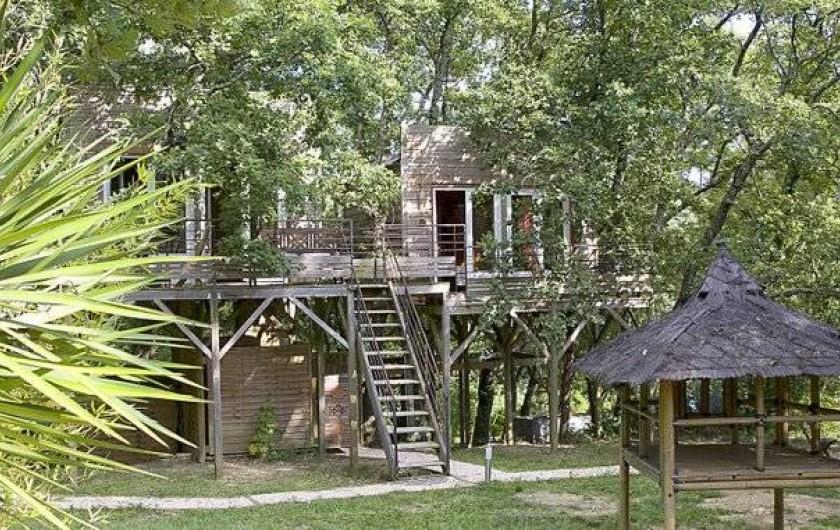 Location de vacances - Yourte à Barjac - 2 cabanes perchées dans les arbres pour 2 à 4 personnes