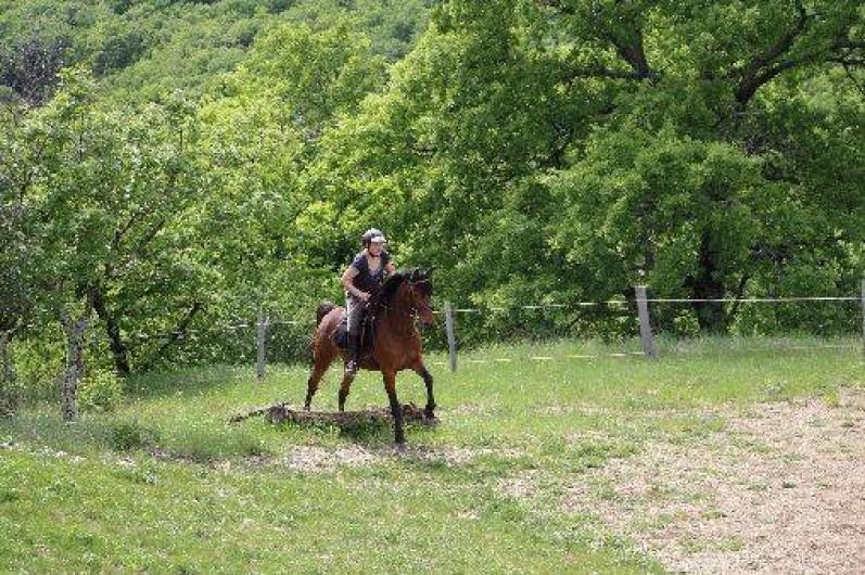 Location de vacances - Gîte à Saint-Maurice-d'Ibie - Cours d'équitation en terrain varié