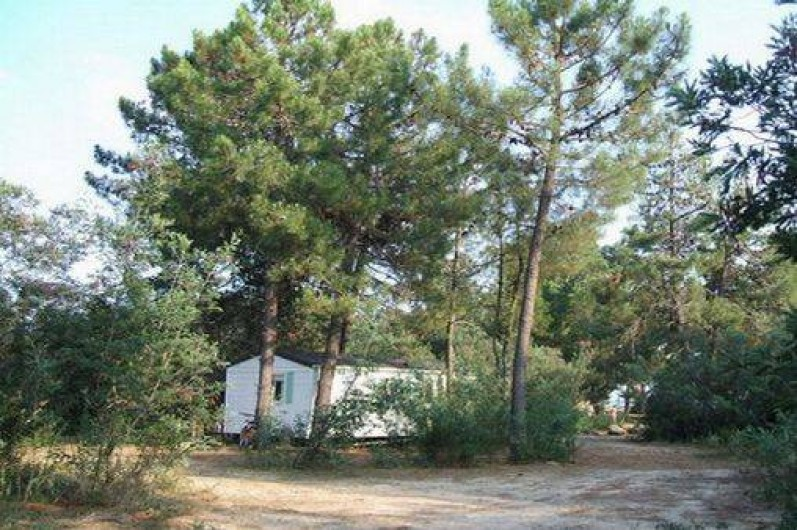 Location de vacances - Bungalow - Mobilhome à Ghisonaccia