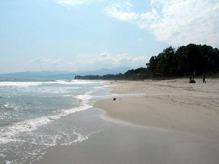 Location de vacances - Bungalow - Mobilhome à Ghisonaccia - Plage