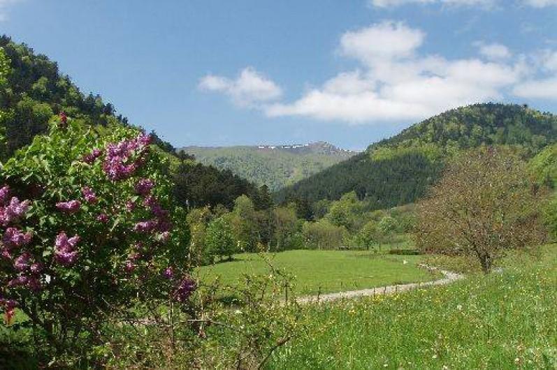 Location de vacances - Gîte à Mittlach