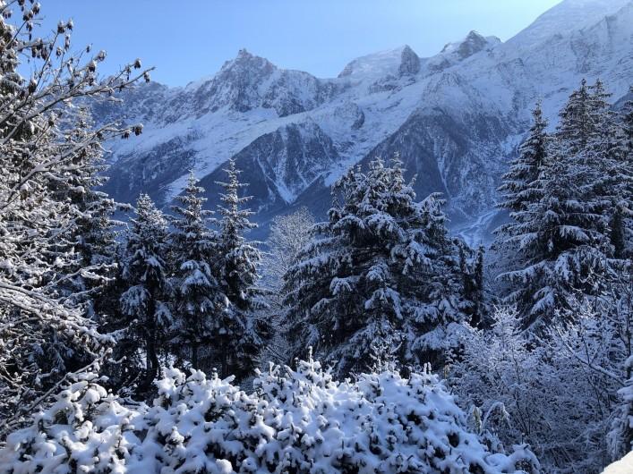 Location de vacances - Chalet à Chamonix-Mont-Blanc - ..ET sa vue !!!!