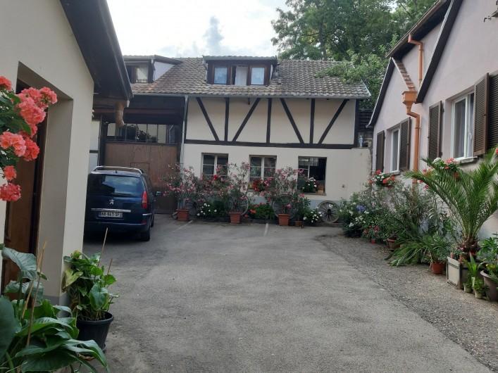 Location de vacances - Gîte à Ingersheim - Étang de pêche