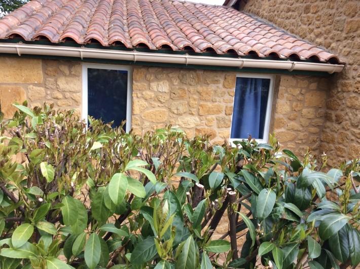 Location de vacances - Maison - Villa à Siorac-en-Périgord - Derrière de la maison