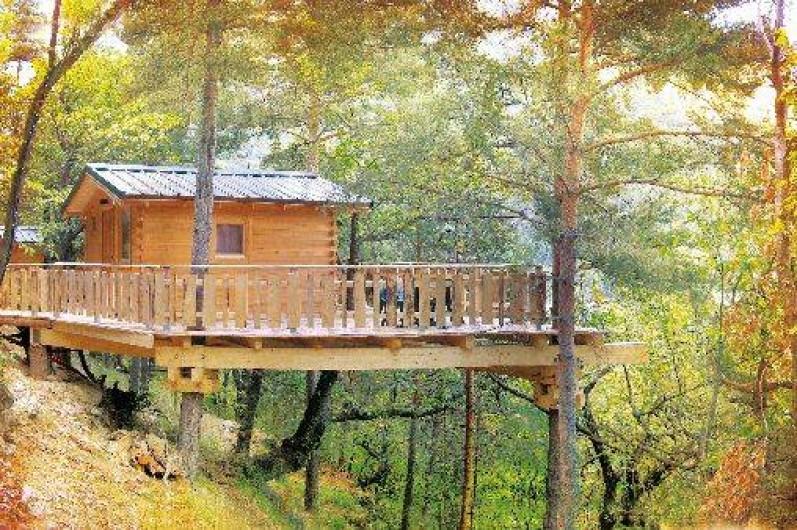 Location de vacances - Cabane dans les arbres à Tende