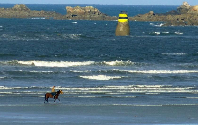 Location de vacances - Villa à Plougoulm - Promenade à cheval au bord de mer