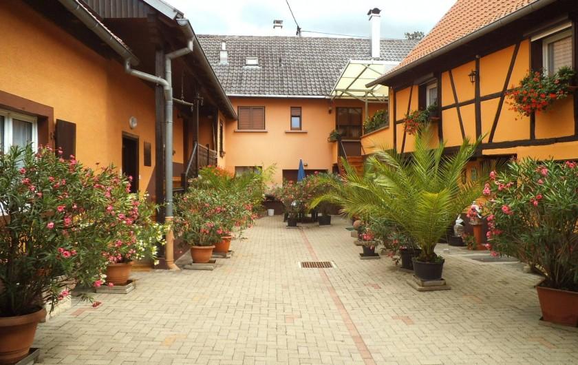 Location de vacances - Gîte à Niedernai
