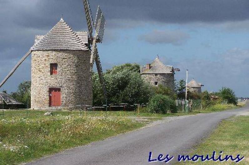 Location de vacances - Gîte à Cherrueix - moulins