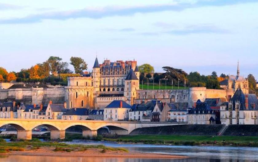 Location de vacances - Gîte à Lussault-sur-Loire - Château d'Amboise