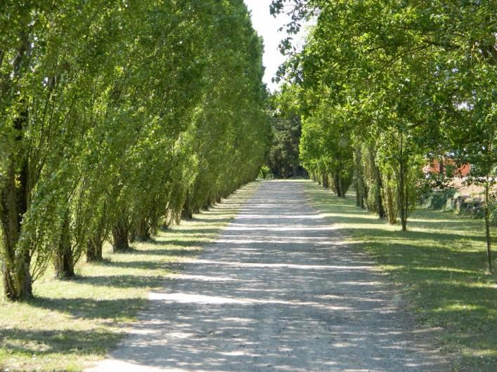Location de vacances - Gîte à Lussault-sur-Loire