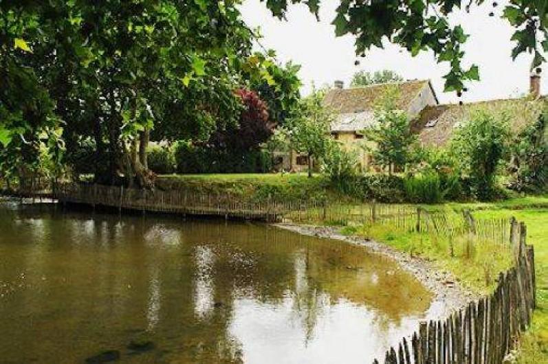 Location de vacances - Chambre d'hôtes à Champignelles - La mare