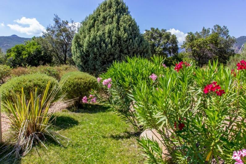 Location de vacances - Villa à Porto-Vecchio - AUTOUR DE LA PISCINE