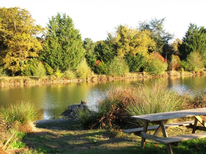 Location de vacances - Camping à Onzain - plan d'eau calme divisé en 2 parties: