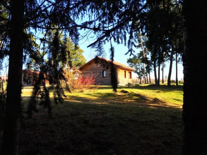 Location de vacances - Chalet à Boisset - Chalet pleine nature