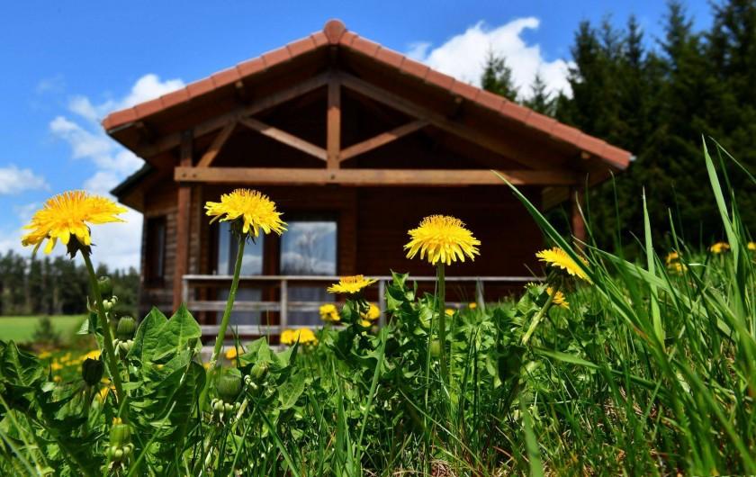 Location de vacances - Chalet à Boisset - Chalet en pleine nature