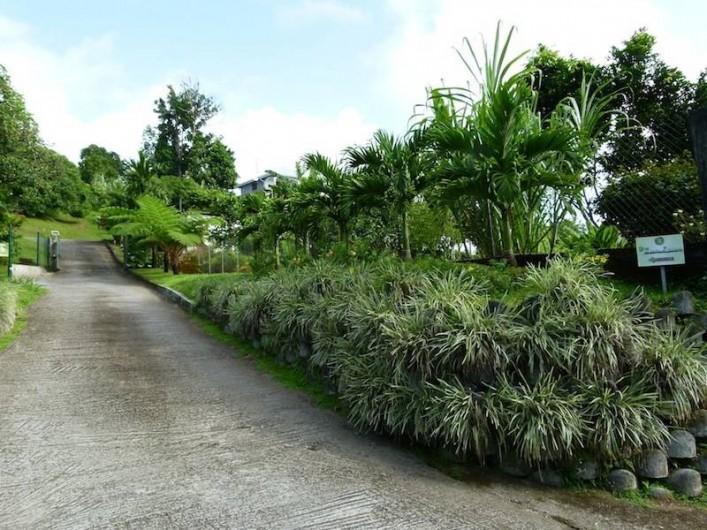 Location de vacances - Villa à Gros-Morne - Chemin privé d'accès