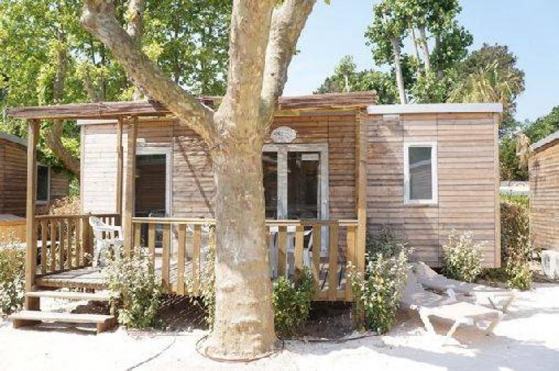 Location de vacances - Camping à Grimaud