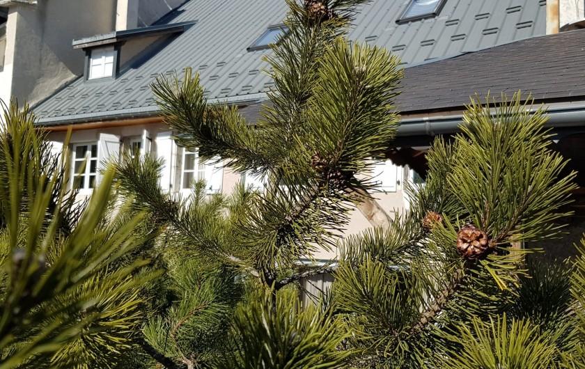 Location de vacances - Maison - Villa à Villard-de-Lans - Maison côté jardin