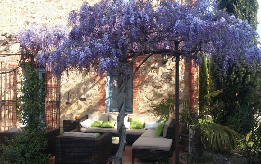 Location de vacances - Chambre d'hôtes à Camélas - Terrasse en fleur avec glycines