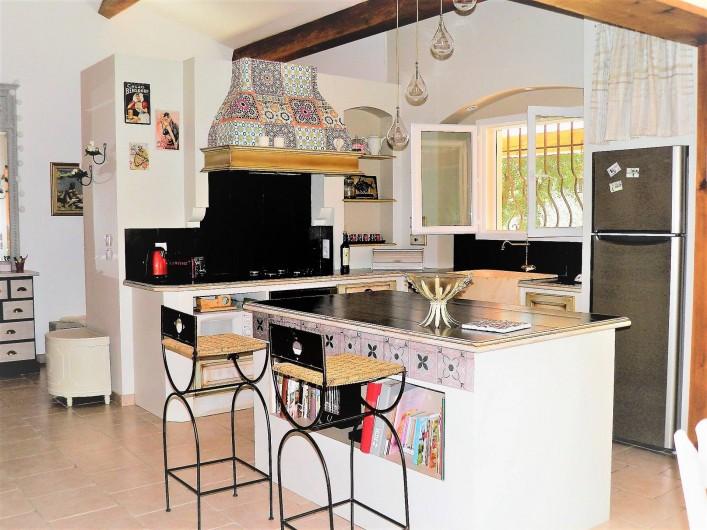 Location de vacances - Villa à Saint-Michel-d'Euzet - La cuisine américain toute équipée