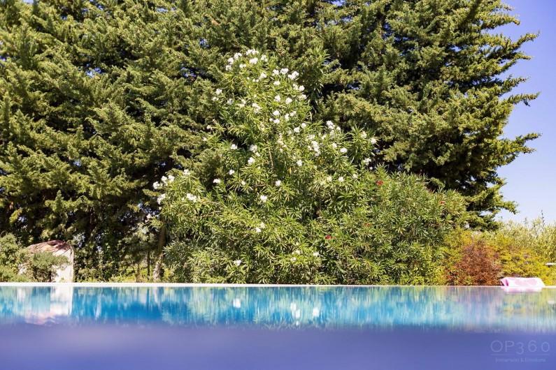 Location de vacances - Villa à Saint-Michel-d'Euzet - Piscine sans vis à vis