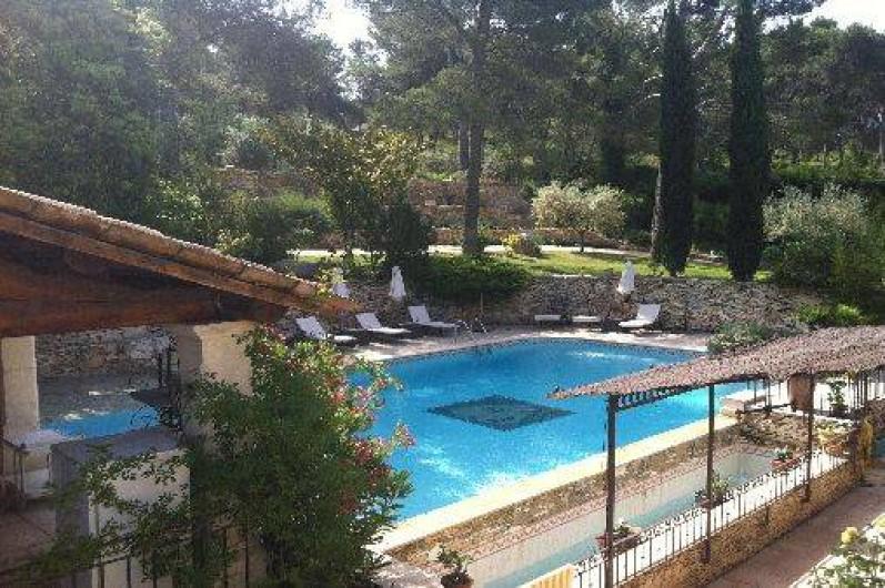 Location de vacances - Mas à Orgon - grande piscine dans son écrin de verdure