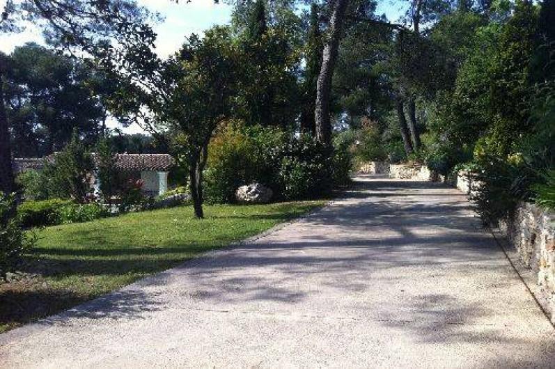 Location de vacances - Mas à Orgon - chemin traversant le jardin