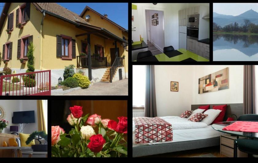 Location de vacances - Gîte à Muttersholtz - details