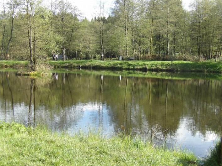 Location de vacances - Appartement à Granges-sur-Vologne - L'étang de pêche à 500m de la maison
