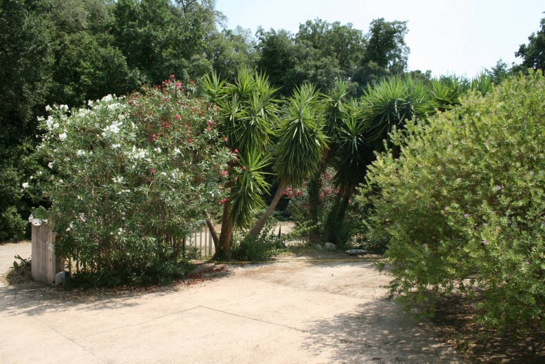 Location de vacances - Villa à Prunelli-di-Fiumorbo - extérieur
