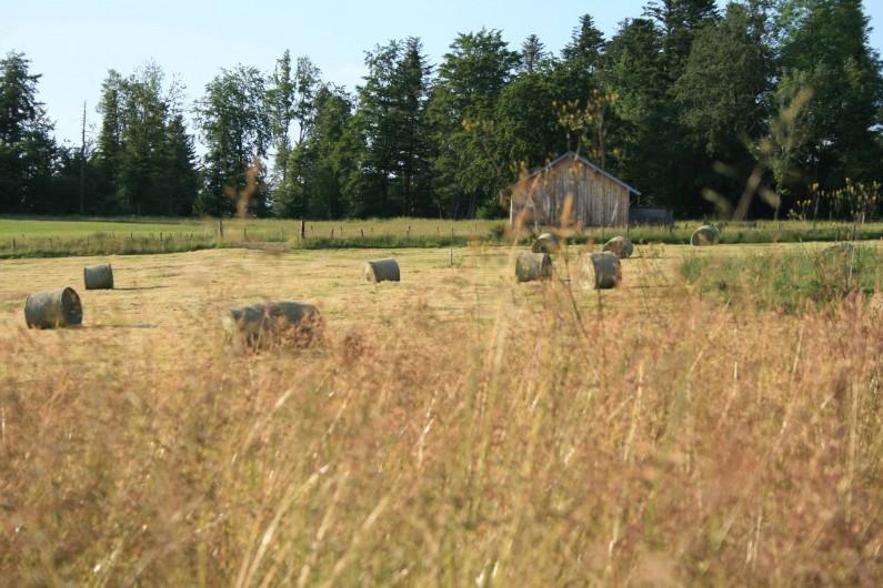 Location de vacances - Gîte à Arc-sous-Cicon - Champ derrière la maison