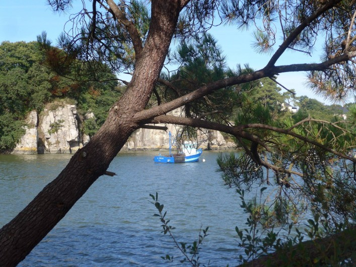 Location de vacances - Chambre d'hôtes à Camoël - Environnement de la location photos 1-2-3-4-5-6
