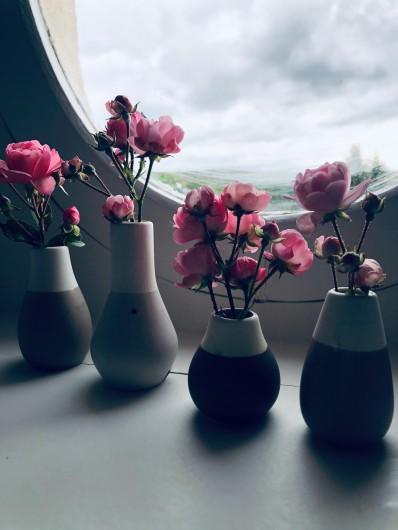 Location de vacances - Gîte à Tonnoy - Des fleurs... encore des fleurs